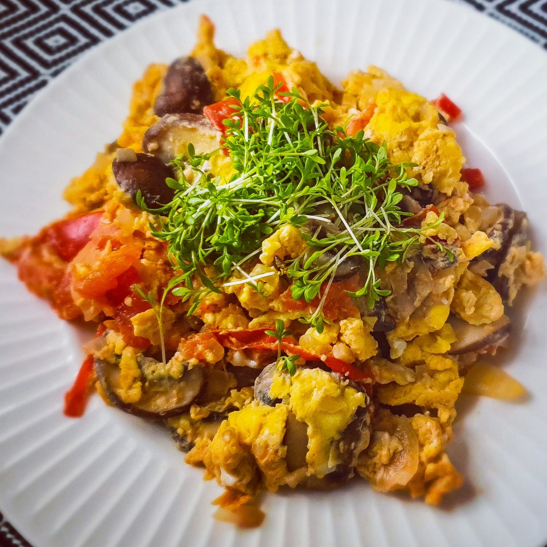 Omelett mit Käse, Kurkuma Champignon und Kresse