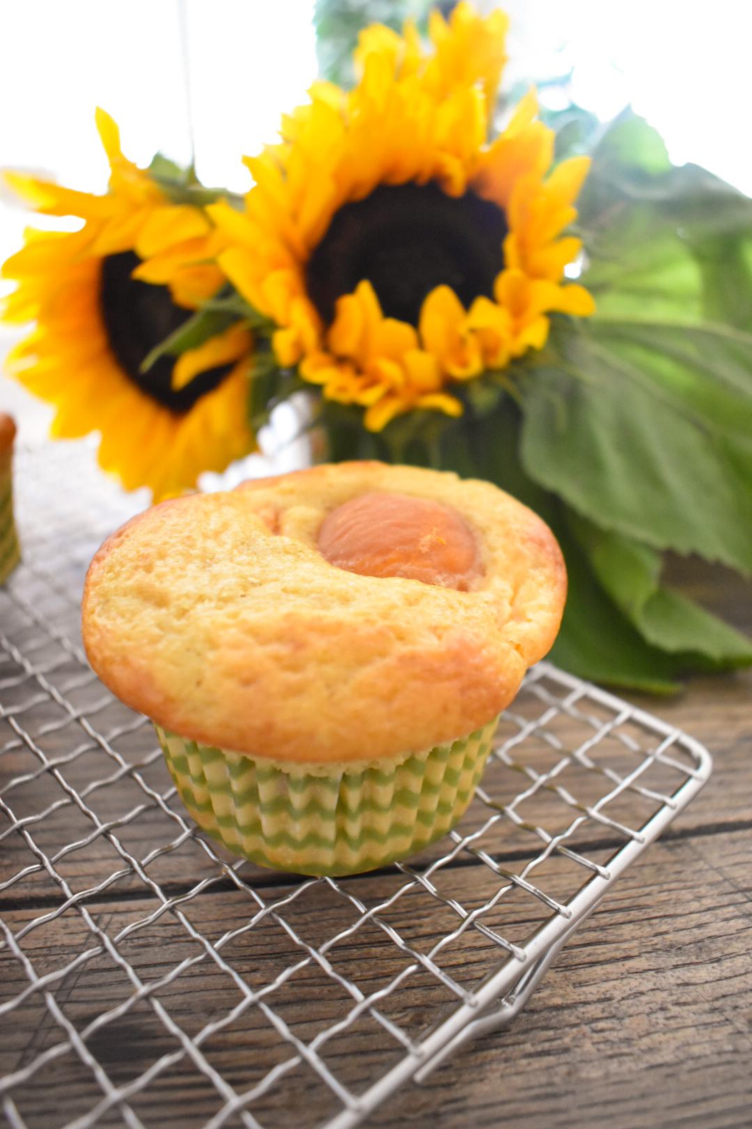 Vanille-Aprikosen Muffins